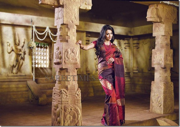 Trisha_Traditional_Saree (3)