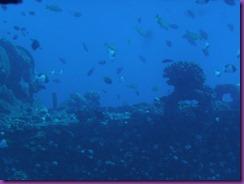 submarine 025