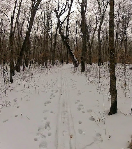 Lucky's Loype has skier made track. This section is on the DNR AMA land and not groomed this year. If any questions, talk Jay or Jim.