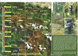 Leuser leaflet (reverse)