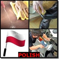 POLISH- 4 Pics 1 Word Answers 3 Letters