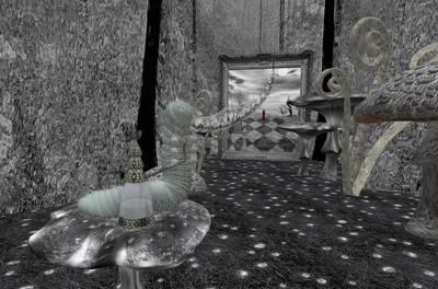 Wonderland 008