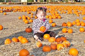 10-29-12_Pumpkin-Patch10