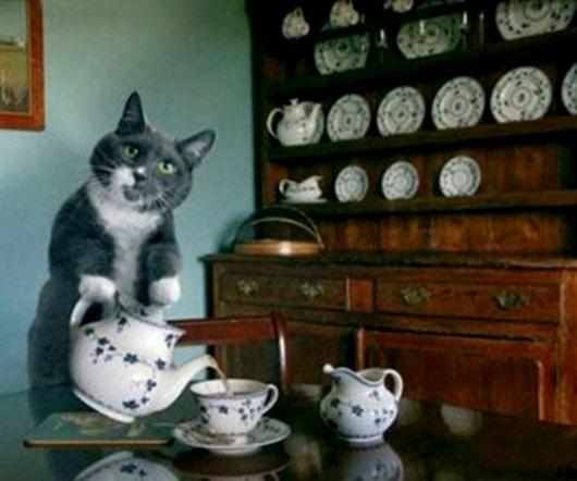 чашка-кот