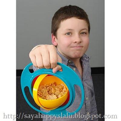 gyro-bowl