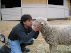 Did you know that farm animals often end up at local municipal shelters? There are farm-animal rescue groups across the county that offer sanctuary and humane education. Here is Richie volunteering at Animal Acres (.org). At least you won't have to worry about taking any animal home with you!