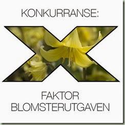 x-faktor-gul