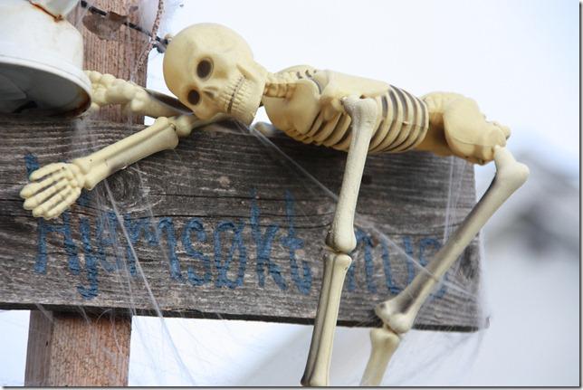 halloween dekor IMG_8140