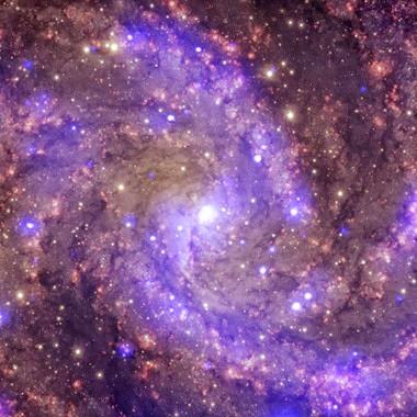 NGC 6946 _Chandra