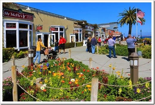 140324_Monterey_0003
