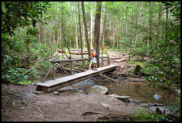 22d - Raven Cliffs Falls - bridge across Dodd Creek which we followed all the way to the falls