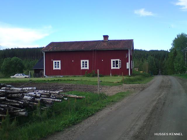 Garm & Bestla bor här