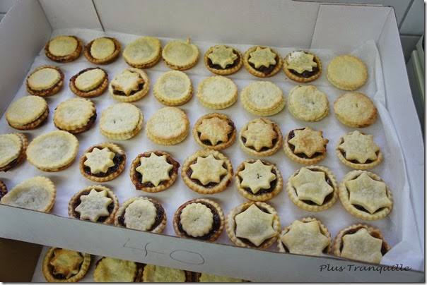 Mince Pies (14)
