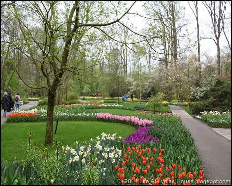 Keukenhof Gardens 11