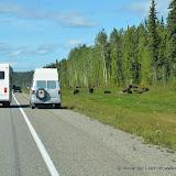 Kanada_2012-09-06_2020.JPG