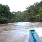 ロングボートでのJelalong川遡上(Jelalong川上流域)/ Traveling up the Jelalong River by longboat