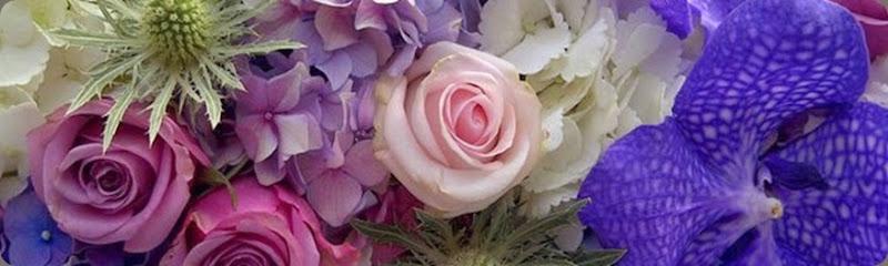 269147_183073275088604_8323206_n laura kuy flowers