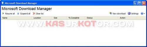 Microsoft Download Manager 2