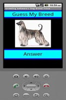 Screenshot of Dog Breed Trivia