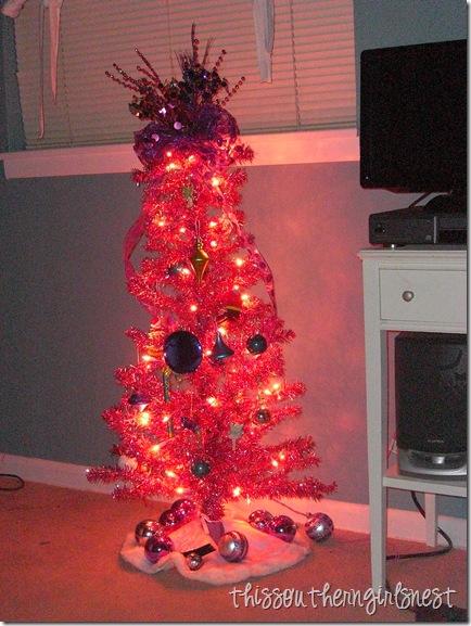 december 2011 006