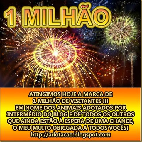 adotacao_blogspot