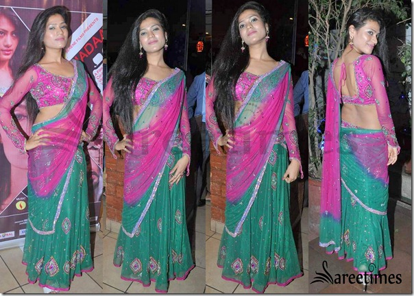 Net_Saree