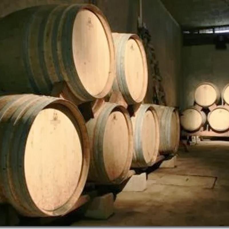 Ruta del vino (Tarija)