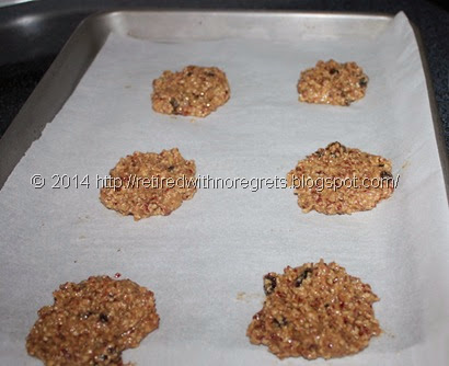 Cranberry Raisin Walnut Oatmeal Cookies - Gluten Free - ready to bake