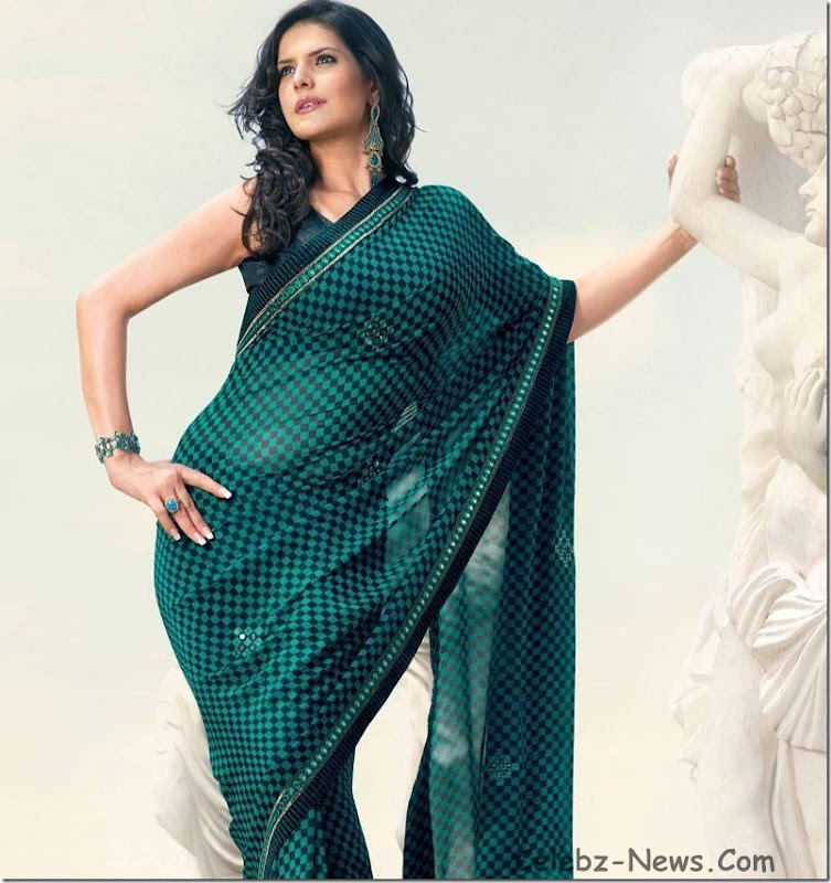 zarine-khan-saree-17