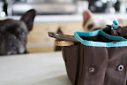 The drawstring closure can store dry food for later use, and a side pocket offers additional storage for treats.   We LOVE that aspect!