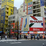 sharp sign in akihabara in Akihabara, Tokyo, Japan