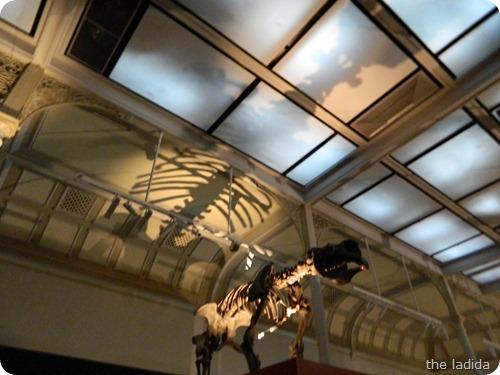 Jurassic Lounge at Australian Museum-  Halloween 2012 (8)