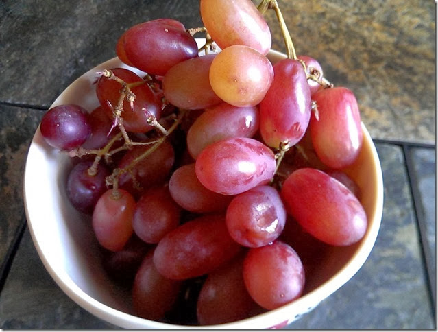grapes-public-domain-pictures-1 (2289)