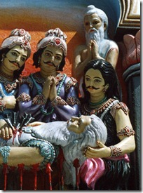 Pandavas with Bhishmadeva