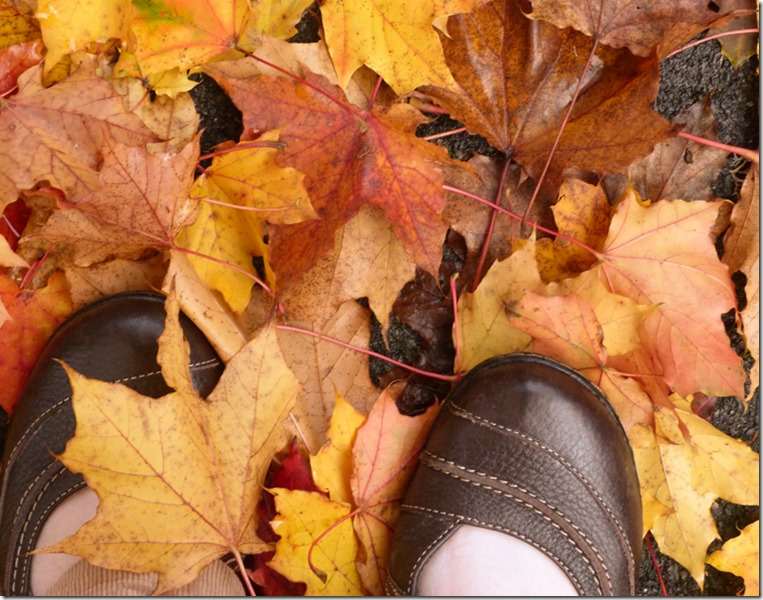 Autumn Leaves Crunching Under My Feet