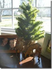 christmas house 2012 005