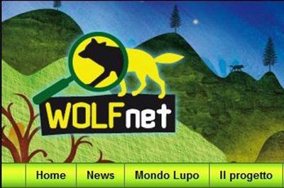 WOLF NET