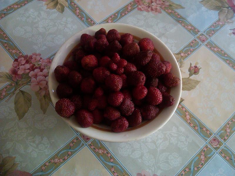 полуниці