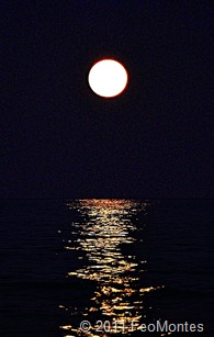Luna de Agosto (2) copia