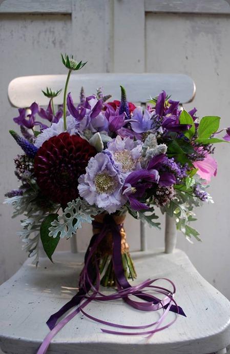 scabiosa 58101_659401434089361_95690907_n jo flowers