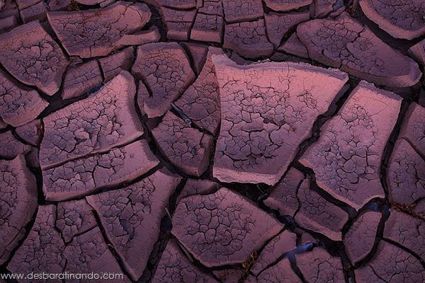 natureze-nature-padrao-pattern-desbaratinando (26)