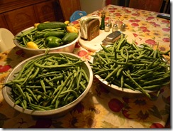 Emily Birthday and Green Beans 001