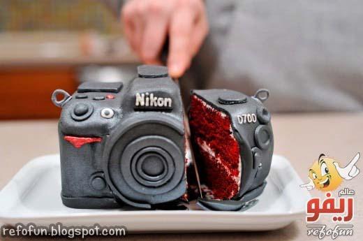 nikon_cake-refofun