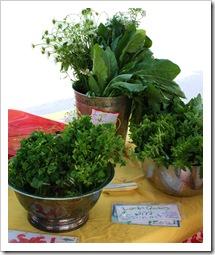 herbs, clove valley csa, woodstock farm festival 2