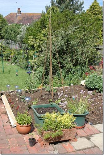 garden 017