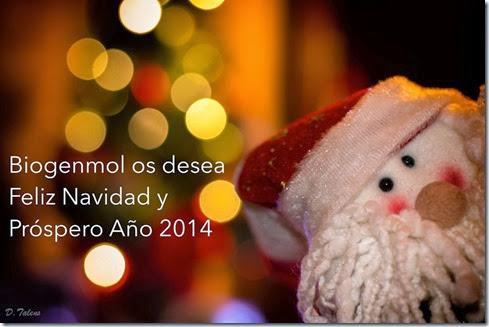 Felicitación navidad_blog