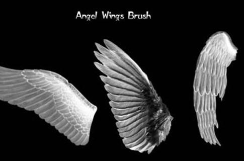 Pinceles de alas con relieve