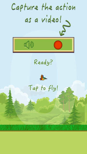 Catchy Bird  Capture the Flappy Wings
