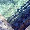 2015 03 01 piscine bois modern pool (93).JPG