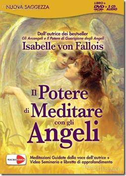 il-potere-di-guarigione-degli-angeli-2-dvd-59985